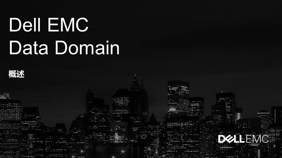 戴尔Dell EMC Data Domain|戴尔